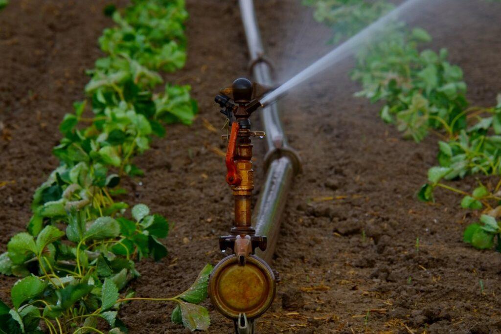 Desalinizacion de Agua para Riego Agrícola. Una oportunidad para América Latina